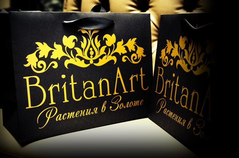 Events: Знакомство с BritanArt