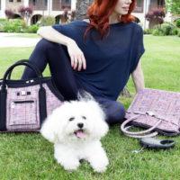 Save my dog! Итальянский брендSaveMyBag выпустил капсулу сумок-переносок для маленьких собак и щенков